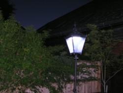 DW Windsor Victorian Lantern