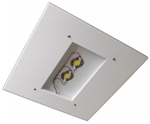 Dover LED canopy light