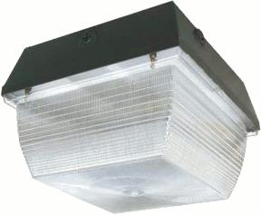 Bedford LED Amenity Light